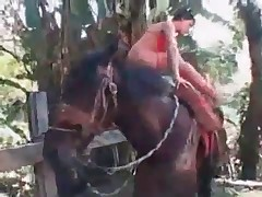 Sexy black stallion and hot rider