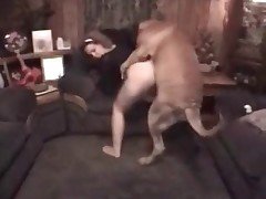Kinky slave is jerking pooch's dork